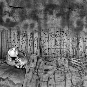 """Deathbed. From the series """"Asylum of the Birds"""" © Roger Ballen"""