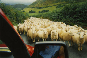 © Roger Jones, Tywyn, Gwynedd