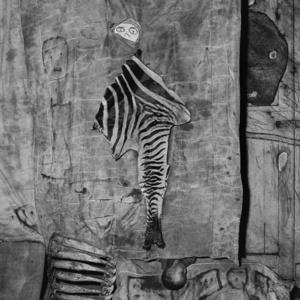 Skins and bones, 2007 © Roger Ballen