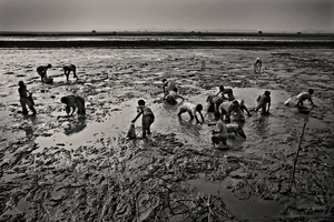 Young children look for small fish in the mud. Vamia, Satkhira. © Munem Wasif
