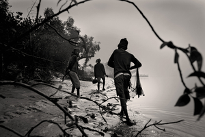A father, son, and uncle cast their net to catch fish at dawn. Sunderban, Satkhira. © Munem Wasif