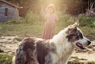 From Somerset Stories - Fivepenny Dreams © Venetia Dearden