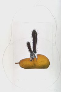 Untitled (pear and couple), from Journal of a Miscarriage, 1973 © Joanne Leonard.  Collection of Jeremy Stone, San Francisco