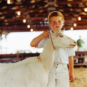 Showmanship © Dan Nelken, Till the Cows Come Home: County Fair Portraits