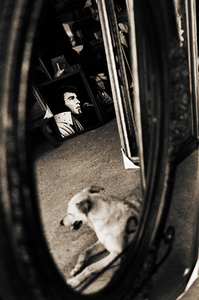 From Dogs Can't Read © Daniel Milnor