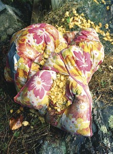 Pillow, from What Still Remains © Jessica Backhaus