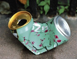 Greentea in Brooklyn, from What Still Remains © Jessica Backhaus