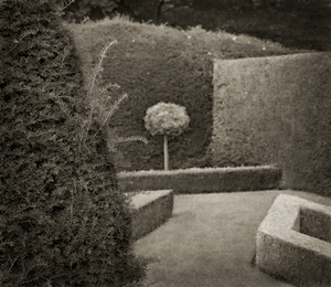 "Standard, Little Moreton Hall, 18.5x16"" Platinum Palladium © Beth Dow"