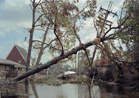 Bellaire Drive, September 2005, New Orleans © Robert Polidori, courtesy of Prix Pictet 2008