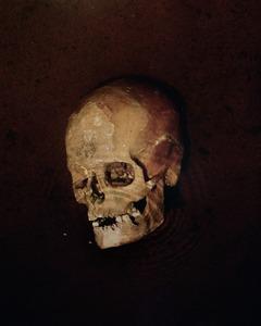 "A Paltaniemi skull from 18th century. From the exhibition ""Kainuu"" © Maria Gallen-Kallela"