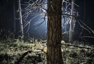 © Szymon Roginski, Projekt UFO #02