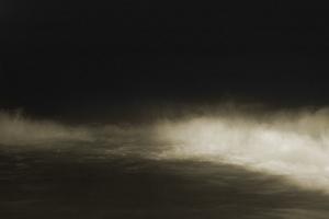 Sentient XII © Melissa Fleming