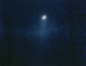 In Darkness Visible (Verse I) #12. 2007 © Nicholas Hughes