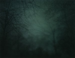 In Darkness Visible (Verse I) #10. 2007 © Nicholas Hughes
