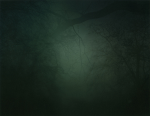 In Darkness Visible (Verse I) #19. 2007 © Nicholas Hughes