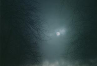 In Darkness Visible (Verse I) #11. 2007 © Nicholas Hughes