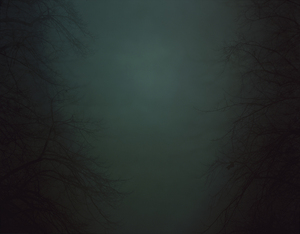 In Darkness Visible (Verse I) #15. 2007 © Nicholas Hughes