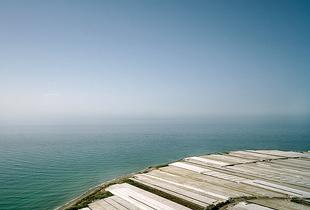 Greenhouse structures blend with the Mediterranean Sea. Albuñol, Granada. © Reinaldo Loureiro
