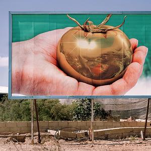 Billboard. El Ejido, Almería. © Reinaldo Loureiro