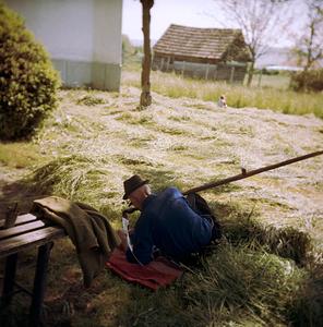 Garden (Sárpatak, Romania, 2005)  © Tamas Paczai