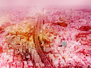 "© Pascal Ken, ""7 days in Tokyo"" Image courtesy Mois de la Photo OFF"