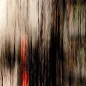 """Title: +37° 47' 8.71"""", -122° 23' 24.81""""       © Nicolo Sertorio"""