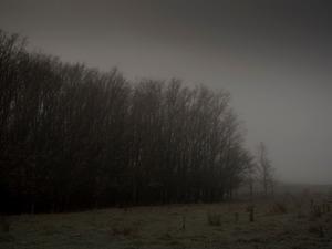Bungendore Road #2.   © Ross Duncan
