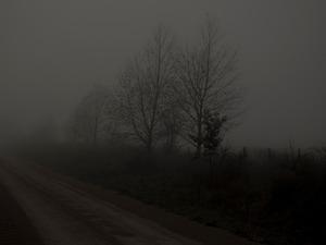 Bungendore Road.    © Ross Duncan