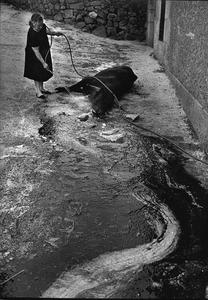 Fermoselle, 1974 © Fernando Herraez