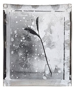 Nature Morte 23, 2012, 159 x 127 cm, Silver Gelatin Print, Mixed Media © Jeff Cowen