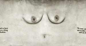Torso Series by © June Yong Lee