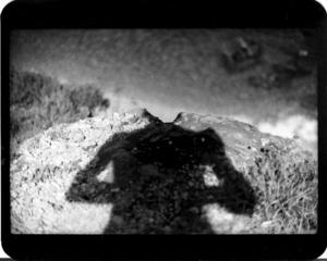 """""""Untitled"""" (Shadow #12), 2011"""