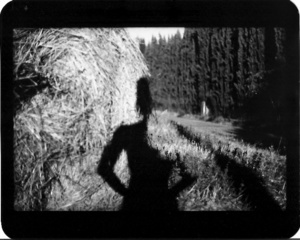 """""""Untitled"""" (Shadow #06), 2011"""