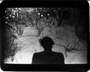 """""""Untitled"""" (Shadow #11), 2011"""