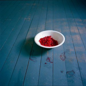 Bowl of Cherries. Rockport, Maine, 2007. © Cig Harvey.