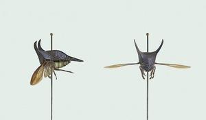 TREEHOPPER [Hemikyptha botulI] Pollutant-sensitive insect