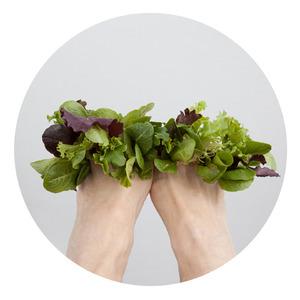 the transmigration of dream into salad © Barbara Ciurej And Lindsay Lochman