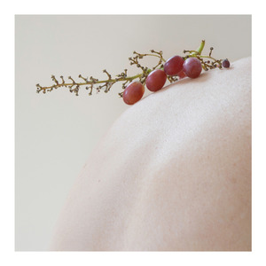 the truth of the fruit in clusters               © Barbara Ciurej And Lindsay Lochman