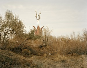 Priozersk II (tulip flowers), Kazakhstan © Nadav Kander, part of the Prix Pictet retrospective