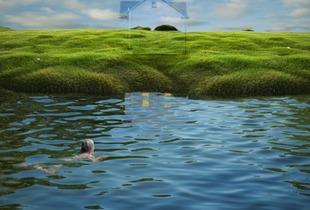 Swimming the Infinite   © Ann Mitchell