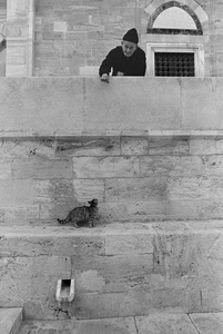 A man plays with a stray cat outside a mosque.