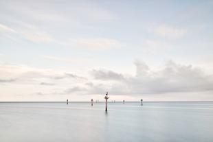 Almost White © Jorge De La Torriente