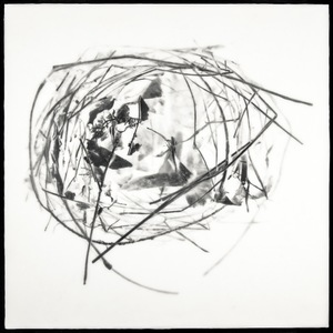 "Nest XI, 2012                                            16""h x 16""w x 1.5""d                        archival pigment print and encaustic on panel                                                     © Christa Bowden"