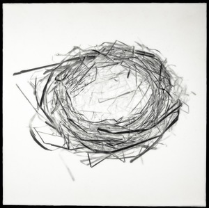 "Nest XVI, 2012                                        16""h x 16""w x 1.5""d                        archival pigment print and encaustic on panel © Christa Bowden"