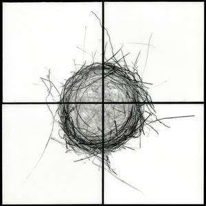 """Nest II, 2009                                              32""""h x 32""""w x 1.5""""d                                         archival pigment prints & encaustic  © Christa Bowden"""