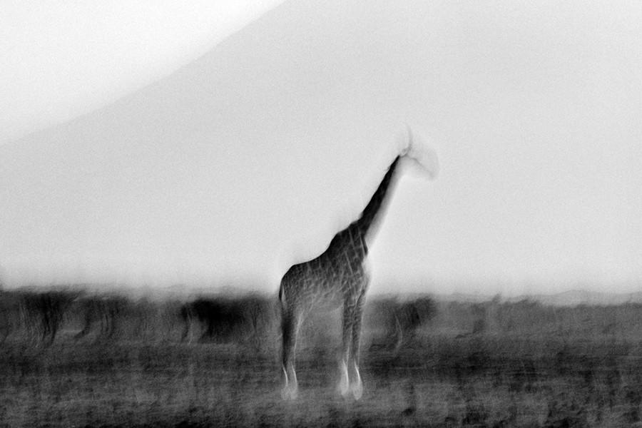 © Britta Jaschinski, from the series Ghosts