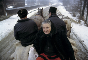 Florica to Market, Sirbi, 2000. Even to the end, Matusa hopes that a buyer will take Florica as a milking cow, and not just for meat. © Kathleen Laraia McLaughlin.