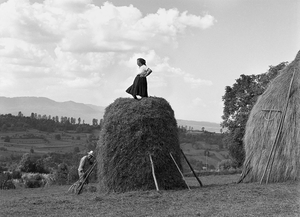 Making a Haystack, Sirbi, 2002. Vasile tosses the dried hay up to Ileana, who tamps it down so that it can be combed to allow the rain to run off. When they are done, he will lay a pole on the side of the haystack, and she will slide down and into his arms. Hay is a lifeblood for these farmers. Their cows and horses have an appetite that must be satisfied three times a day. © Kathleen Laraia McLaughlin.
