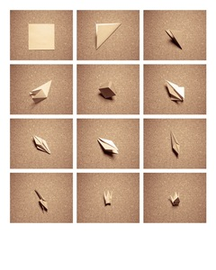 Comment plier une grue. How to fold a crane. © David Favrod