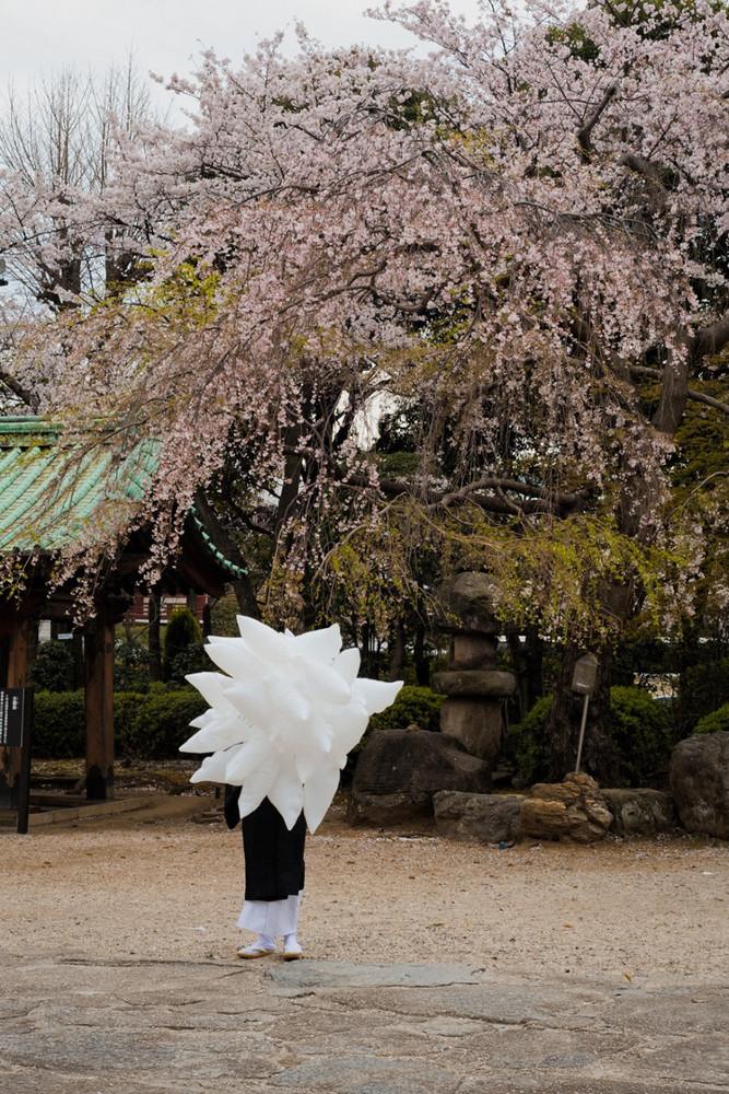 Shibakoen, Tokyo, 2011 © Shin Noguchi